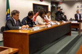 Audiência Pública | Veja as argumentações contra a Placa Mercosul